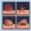 Cuadro conchas de mar III