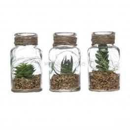 Set 3 botellitas c/planta artificial