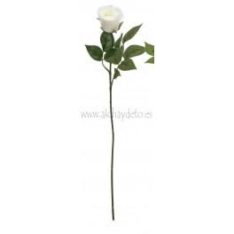 Capullo Rosa Blanco
